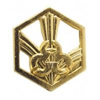 Эмблема РХБЗ